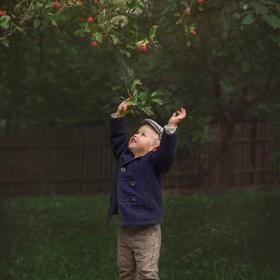 Hop.. pro jablíčko
