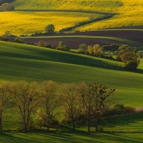Jaro na jižní Moravě