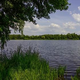Rybnik Černice