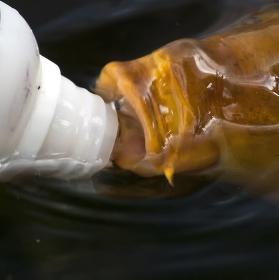 Horko,že i ryby mají žízeň :-)