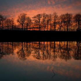 Voleský rybník
