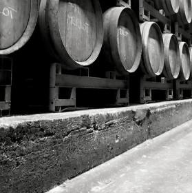 Víno naše vezdejší dej nám všem...