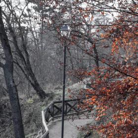 Podzimní lampa