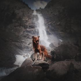 Hlídač vodopádu
