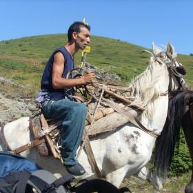 Bulharský sběrač borůvek
