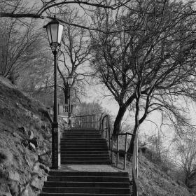 Cesta na Vyšehrad