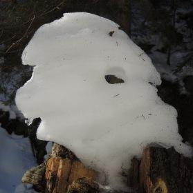 Sněžný muž z profilu
