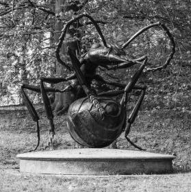 Obří socha mravence v Plzeňské Zoo