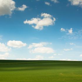 Windows XP naživo
