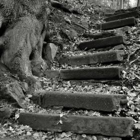 schody k životu