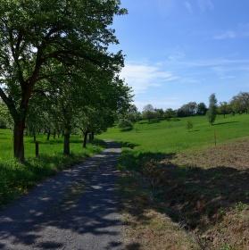 Cestou na Valečov