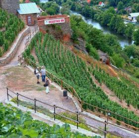Městské vinohrady Znojmo