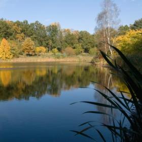 Jestě jednou a naposledy rybník Bašta