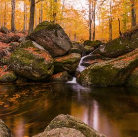 Podzimní tůňka