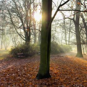 Teplický podzim