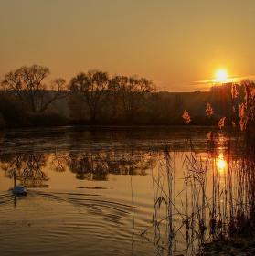 Žebětínský rybník