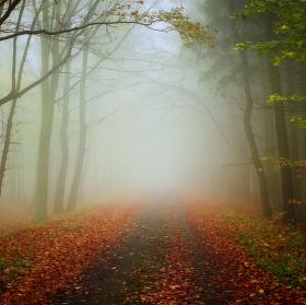 podzim v horách Krušných