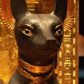 Tutanchamon v Bauhausu (2): Anubis