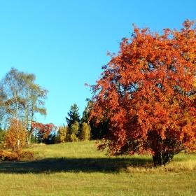 Podzimní příroda na kopci Goliáši.
