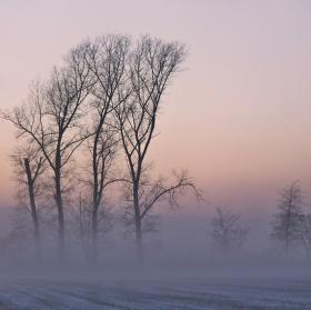 odpolední mlha