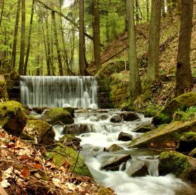 Hartský potok