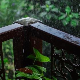 Srí Lanský děšť