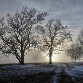 Za zimním sluncem