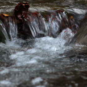 Voda z Beskyd