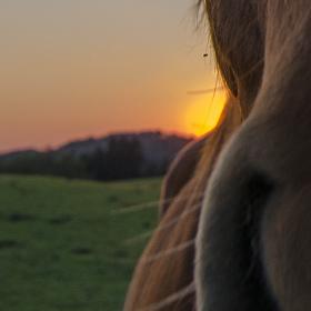 západ slunce... s překvapením