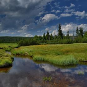 Jizerka poblíž rašeliniště
