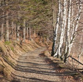 Povánoční procházka v Beskydech