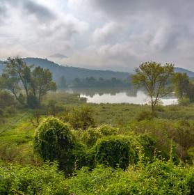 Malhostický rybník