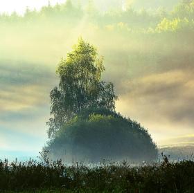 Když slunce mlhu vyhání