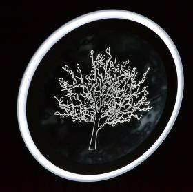 Strom v černém poli