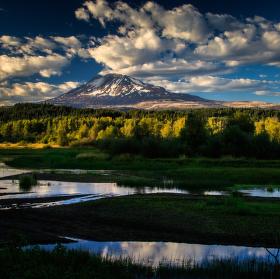 Mt Adams z bažin jezera Trout Lake