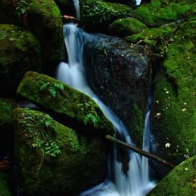 Wolfgangovy vodopády I.