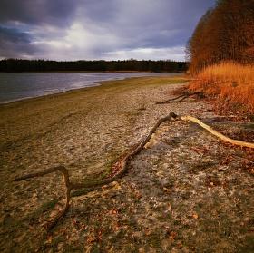 rybník Skříň