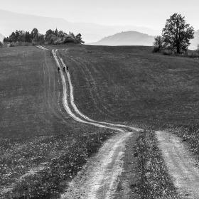 Cesty v krajině