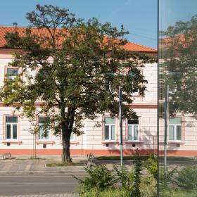 Umelecka skola