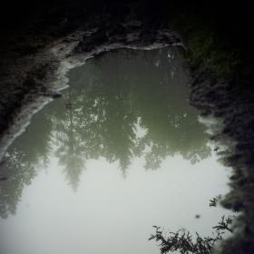 Svět za zrcadlem vody..