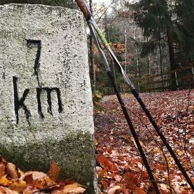 Jedna z Nordic Walkingu