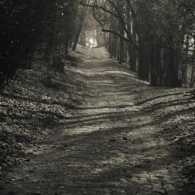 Cesta ze zámku