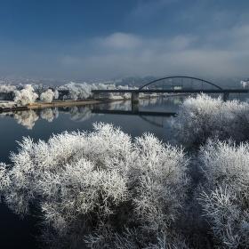Dunaj