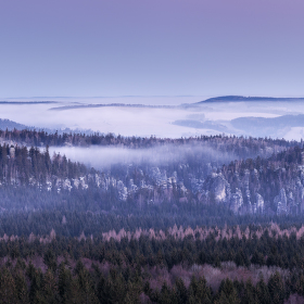 Mlhavá skaliska