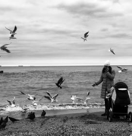 U Černého moře v zimě I