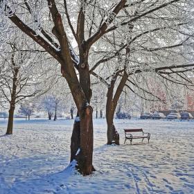 ...zimní zátiší