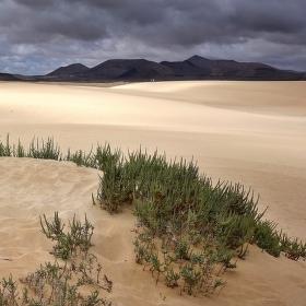 Fuerteventura - Parque Natural Corralejo