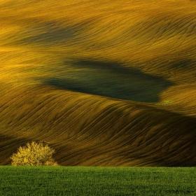 Moravské vlnění ll