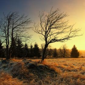 ...ráno sluncem zalité