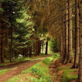 ....po pěšinkách Lužickými horami....